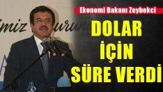 Bakan Zeybekci'den Dolar Kuru Açıklaması