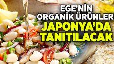 Ege'nin organik ürünleri Japonya'da tanıtılacak