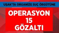 Uşak'ta organize suç örgütüne büyük operasyon