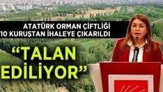 Vekil Karaca'dan  Atatürk Orman Çiftliği İçin Araştırma Komisyonu Kurulsun Çağrısı