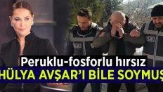 Peruklu-fosforlu hırsız Hülya Avşar'ın evini de soymuş