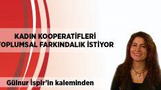Gülnur İspir yazdı: Kadın Kooperatifleri Toplumsal Fakındalık İstiyor