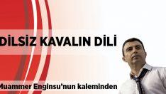 Muammer Enginsu yazdı: Dilsiz kavalın dili