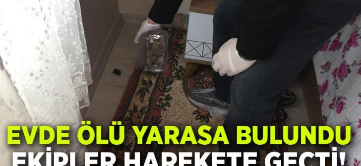 Aydın'da ölü yarasanın bulunduğu ev dezenfekte edildi!