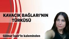 Gülnur İspir Yazdı:                              Kavacık Bağları'nın Türküsü