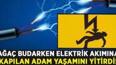 Kestiği dal yüksek gerilim hattına değdi.. Elektrik akımına kapılan Yıldıray Kurt yaşamını yitirdi!