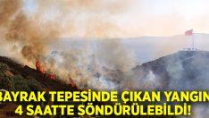 Bodrum'daki yangın 4 saatte kontrol altına alındı, 50 hektarlık alan kül oldu!