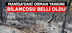 Manisa'daki orman yangının bilançosu belli oldu