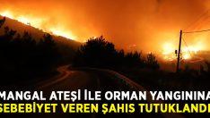 İzmir Menderes'te orman yangınına mangal ateşi ile sebebiyet veren şahıs tutuklandı!