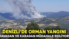 Denizli'de orman yangınına havadan ve karadan müdahale ediliyor!