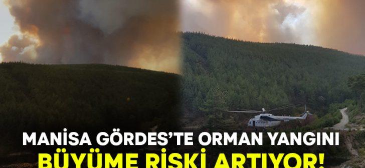 Manisa Gördes'te orman yangını çıktı!