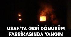 Uşak'ta geri dönüşüm fabrikasında yangın