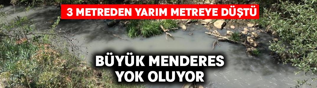 Büyük Menderes'in yok oluyor