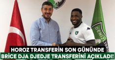 Horoz transferin son gününde Brice Dja Djedje transferini açıkladı!
